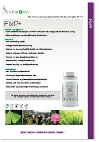 FixP+_pdf